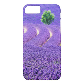 Lone tree in Lavender Field, France iPhone 7 Case