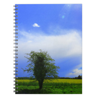 Lone tree spiral note books