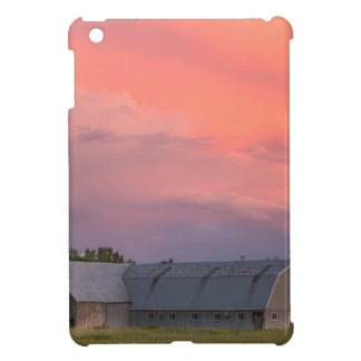 Lonely Barn Case For The iPad Mini