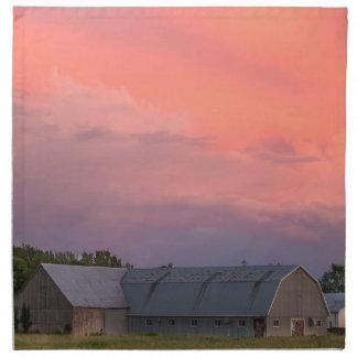 Lonely Barn Napkin