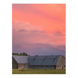 Lonely Barn Postcard