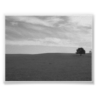 Lonely Black and White Prarie Scene Poster