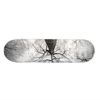 Lonely Branches Custom Skate Board