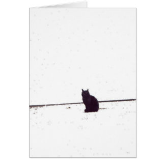 Lonely Cat Card