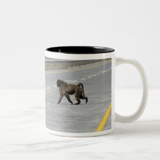 Lonely Chacma baboon crossing highway road Two-Tone Coffee Mug