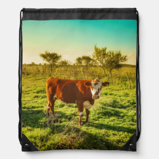 Lonely Cow in the Meadow Facing the Camera Drawstring Bag