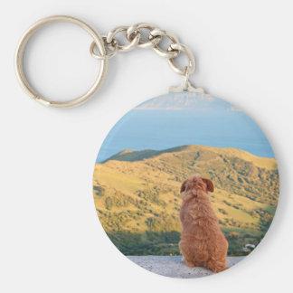 Lonely dog watching on Gibraltar strait Basic Round Button Keychain
