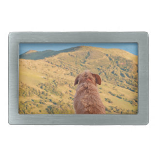 Lonely dog watching on Gibraltar strait Belt Buckles