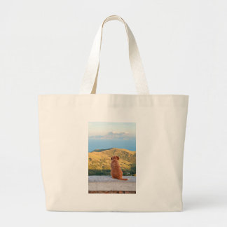 Lonely dog watching on Gibraltar strait Large Tote Bag