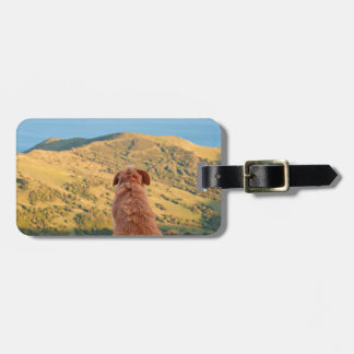Lonely dog watching on Gibraltar strait Luggage Tag