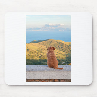 Lonely dog watching on Gibraltar strait Mouse Pad