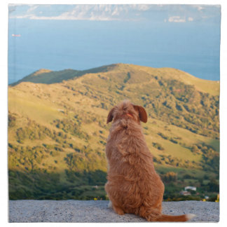 Lonely dog watching on Gibraltar strait Napkin
