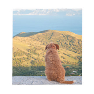 Lonely dog watching on Gibraltar strait Notepad