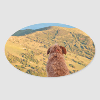 Lonely dog watching on Gibraltar strait Oval Sticker