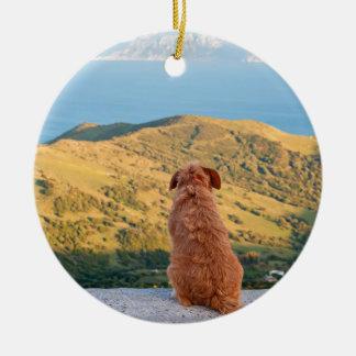Lonely dog watching on Gibraltar strait Round Ceramic Ornament