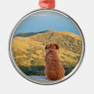 Lonely dog watching on Gibraltar strait Silver-Colored Round Ornament
