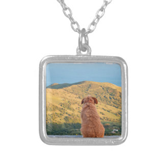 Lonely dog watching on Gibraltar strait Silver Plated Necklace