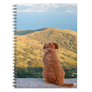 Lonely dog watching on Gibraltar strait Spiral Notebooks