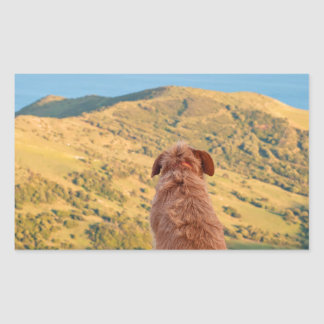 Lonely dog watching on Gibraltar strait Sticker