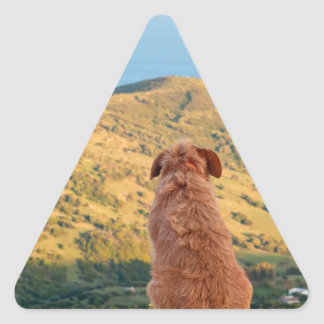 Lonely dog watching on Gibraltar strait Triangle Sticker