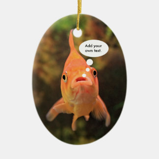 Lonely Fish Ceramic Oval Ornament