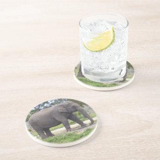 Lonely gray elephant beverage coaster