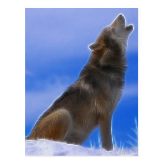 Lonely Howling Endangered Gray Wolf Post Cards