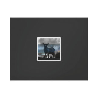 Lonely Lamb on a hill Canvas Print