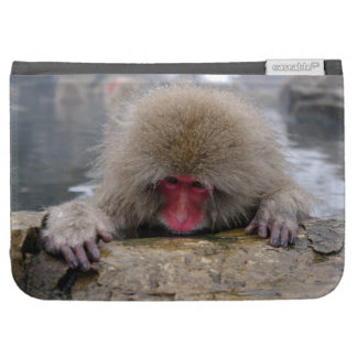 Lonely snow monkey in Nagano, Japan Cases For Kindle