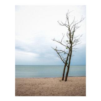 Lonely tree letterhead