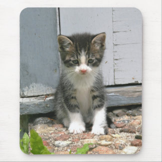 Lonesome Sad Gershwin Kitty Cat Kitten Mousepad