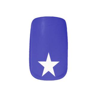 Lonestar Minx Nail Art