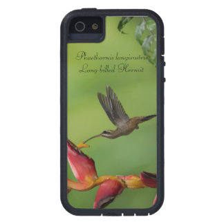 Long-billed Hermit iPhone 5 Cover