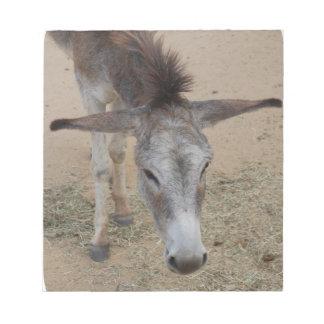 Long Eared Donkey Notepad
