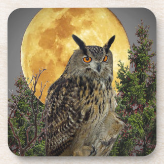 LONG EARED OWL BY MOONLIGHT COASTER