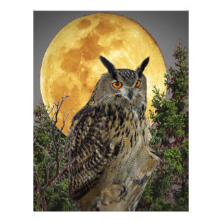LONG EARED OWL BY MOONLIGHT LETTERHEAD