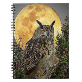 LONG EARED OWL BY MOONLIGHT NOTEBOOK