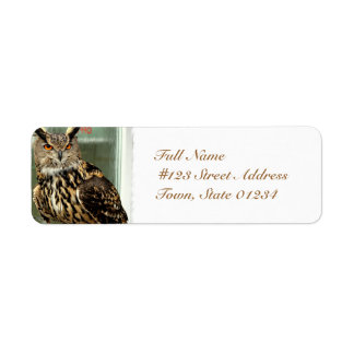 Long Eared Owl Mailing Label