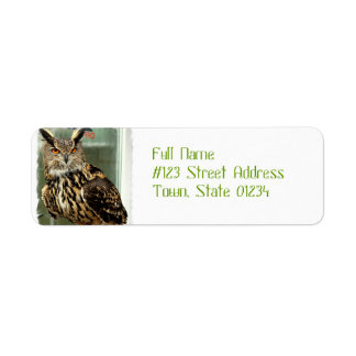 Long Eared Owl Mailing Labels