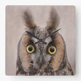 Long-eared Owl Square Wall Clock