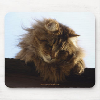 Long-hair Tabby Cat Mousepad