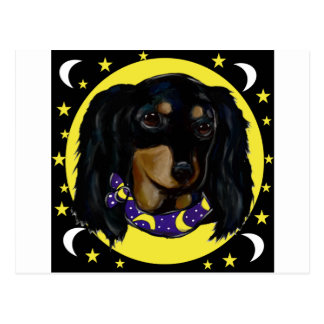 Long Haired Black Dachshund Postcard