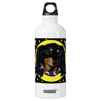 Long Haired Black Dachshund Water Bottle
