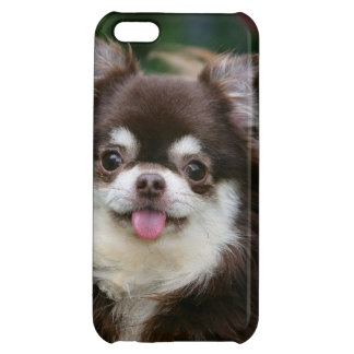 Long Haired Chihuahua Headshot 1 iPhone 5C Case