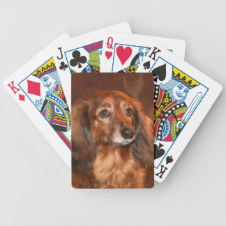 Long haired dachshund bicycle playing cards