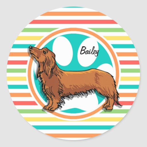 Long-haired Dachshund; Bright Rainbow Stripes Stickers