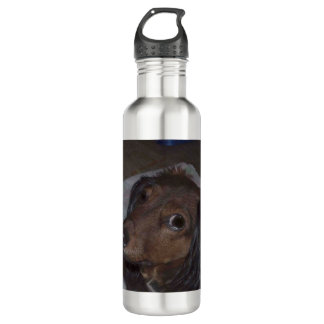 Long-Haired Dachshund Water Bottle