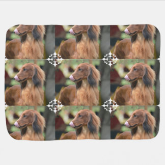 Long Haired Dachshund Swaddle Blankets