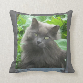 Long Haired Russian Blue Cat Throw Pillow