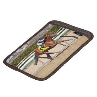 Long Haul Bay iPad Mini Sleeves